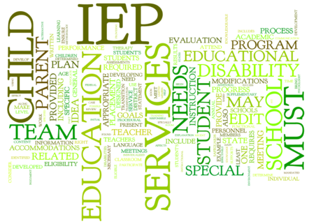 iep_word_cloud1